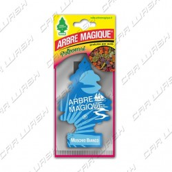Arbre Magique Muschio